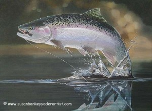 jumpingsteelhead